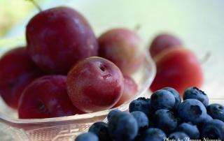 Garden Blueberries & Plums_2000