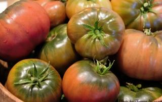 Heirloom Tomatoes 2014_0105 (2)